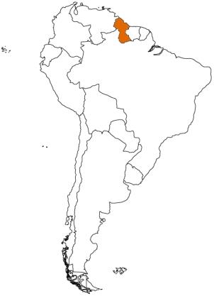 GUY map2