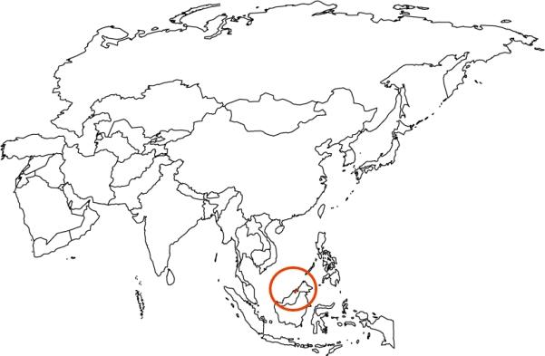 BRN map