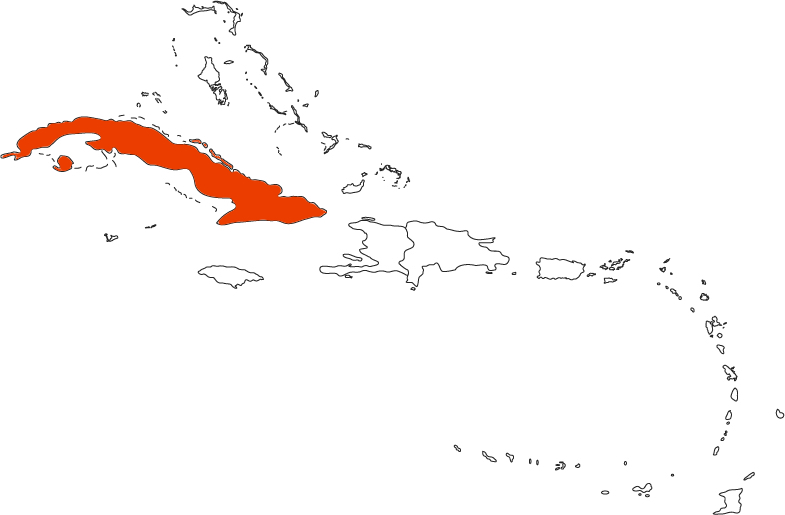 CUB map